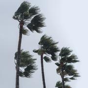 Progressive: August Catastrophe Losses From Hurricane Ida at $341.9 Million
