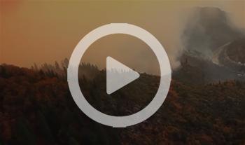 sample video image