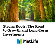 MeLife Investments